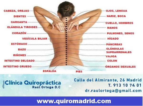 Trastornos Digestivos Y Pinzamientos Cervicales Relacion Y
