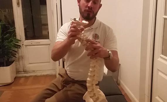 quiropráctica corrige escoliosis